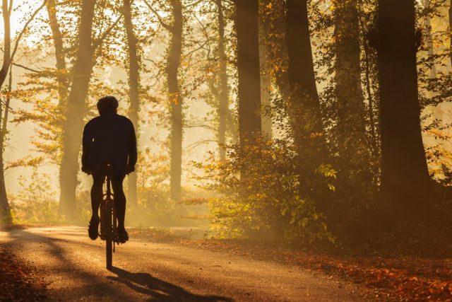 ruteplanner find cykelrute